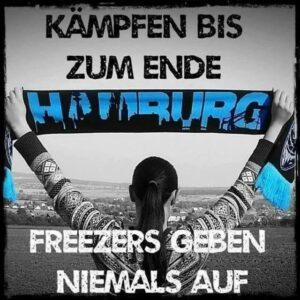 Foto (c) Fanbeirat der Hamburg Freezers